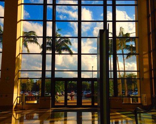 Wonderful Tropical Views