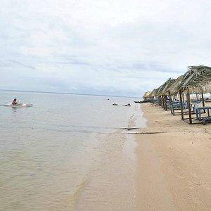 Praia nativa