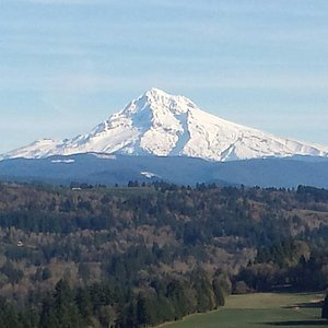 The view of Mt. Hood on Nov 17th, 2014