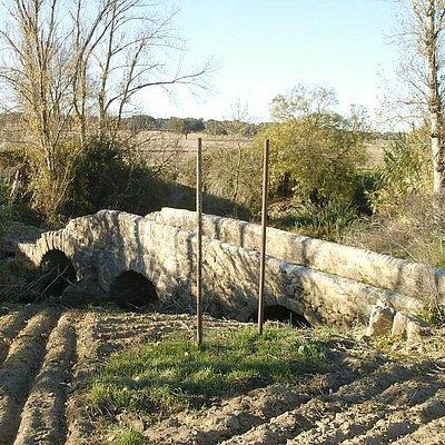 Ruínas da Ponte Antiga do Xarrama (Ponte Romana)