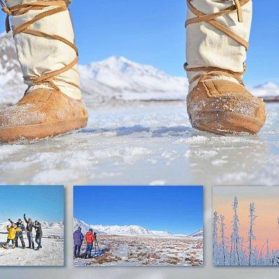 Photo winter safari to the Arctic Circle