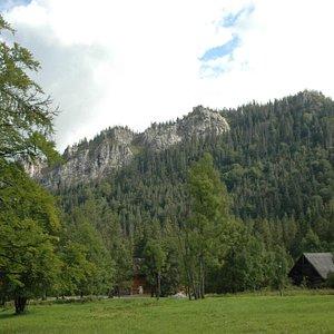 Nosal Mountain - view from Zamoyski Family Park