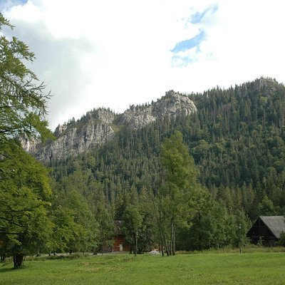 Nosal Mountain - view from Zamoyski Family Park