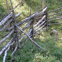местный аутентичный эко-забор - упорядоченные коряги из леса