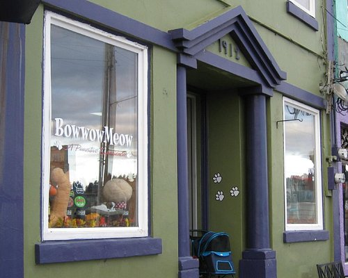 Bow Wow Meow store, Newport