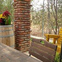 Tasting Area amongst the vineyard