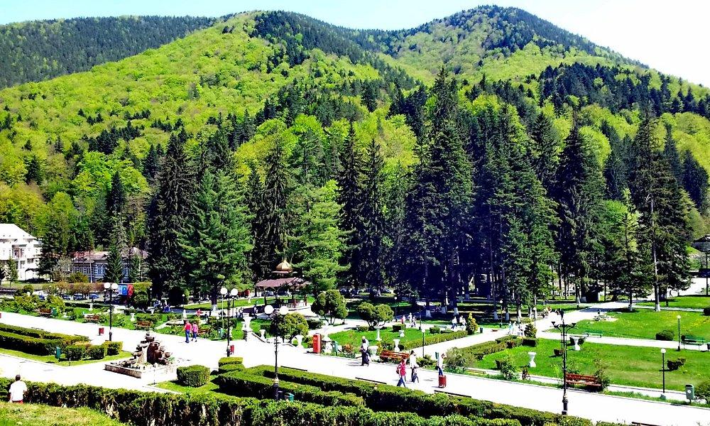 Parcul din Slanic Moldova