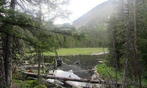 Beaver Pond on Spruce Creek Trail