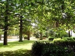 les jardins en été