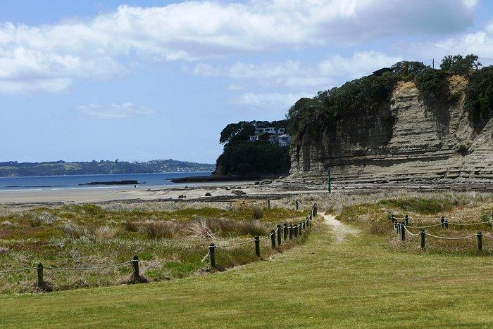 Cliffs and headland at South End of Orewa