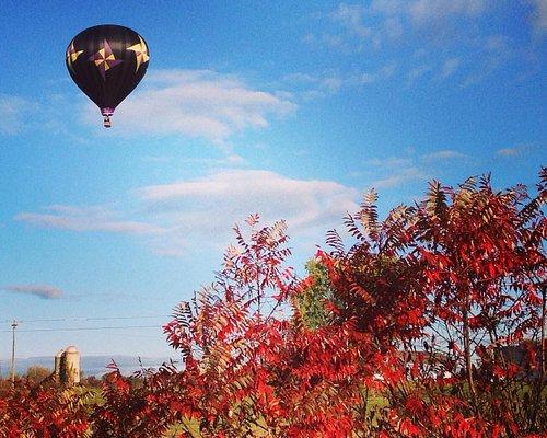 Beautiful fall flight