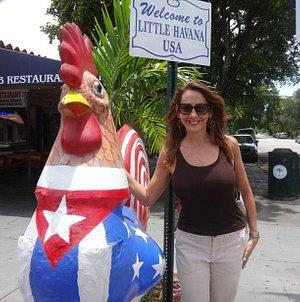 Roosters both live & fiberglass roam Little Havana