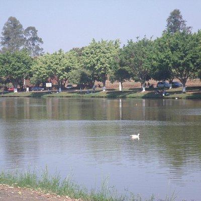 Lago de manhã