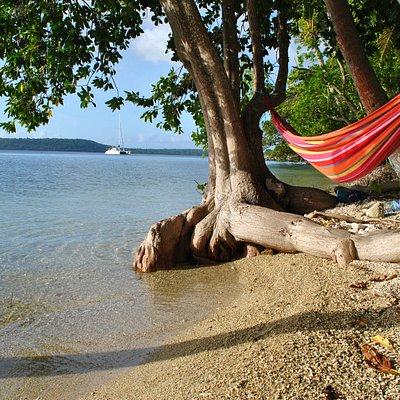 My hammock paradise