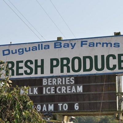 Dugualla Bay Farm