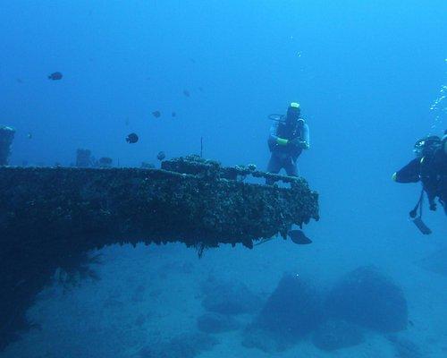 Visite d'une épave à -30m. Grandiose. Une faune sous-marine abondante et diverse...