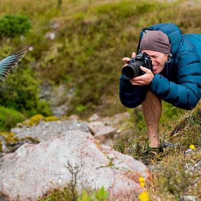 Capturing Kea
