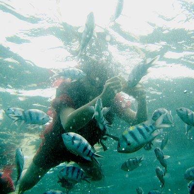Snorkeling at Benoa Water Sport Bali