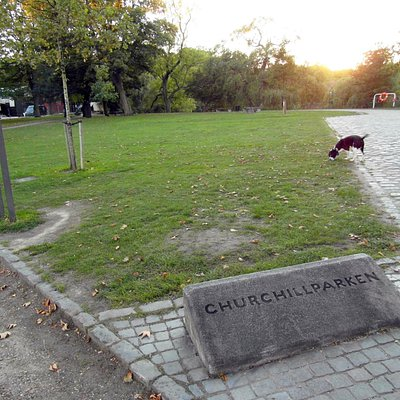 Вид парка и камень с названием