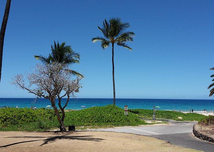 giardini dietro la spiaggia