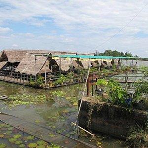 Restaurant flottant sur le Bungva Lake
