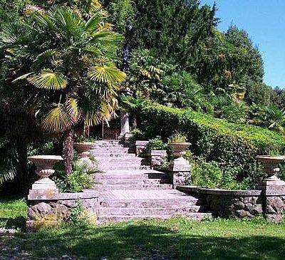Parco del palazzo Coronini Cronberg. Particolare