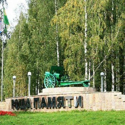 Пушка сейчас стоит перед входом в Романовку