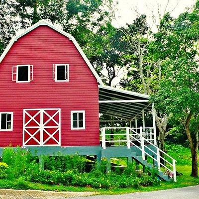 Uncle sam farm