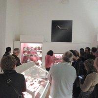 Visita guidata con la direttrice del Museo