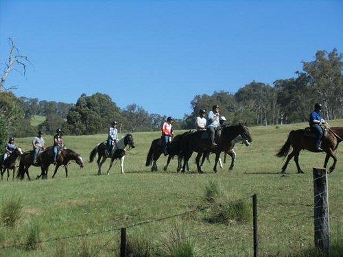 participants on horses