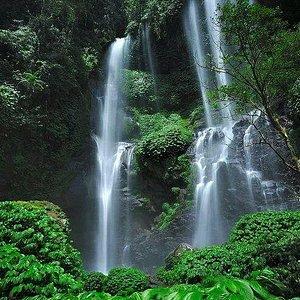 the natural shower of Sekumpul waterfalls