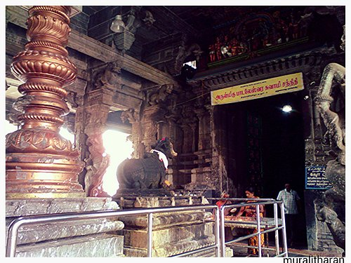 Dwaja sthambam(Kodi Maram)Paldaleeswar temple photo by Muralitharan