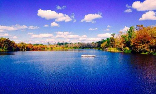 Terrific Lake w/Gators