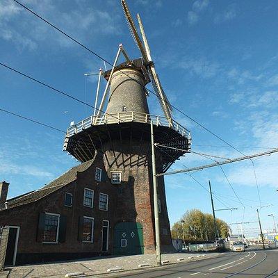 Molen de Roos, Delft