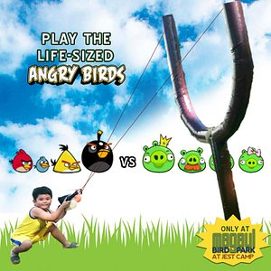 Life-sized Angry Birds