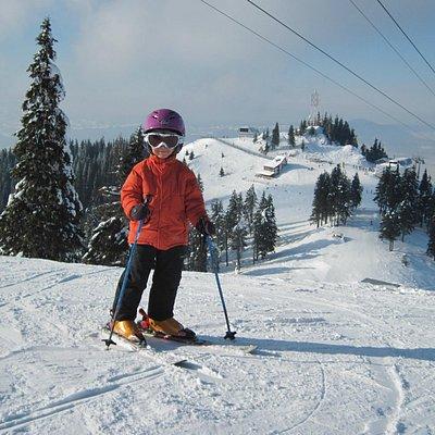 Monitor Ski Poiana Brașov