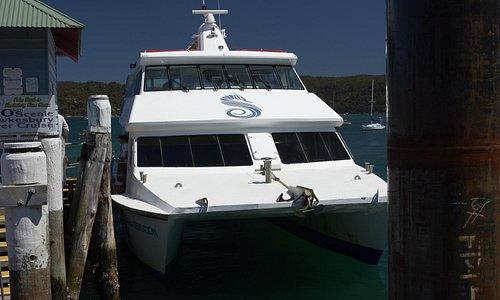 Ettalong to Palm Beach Ferry