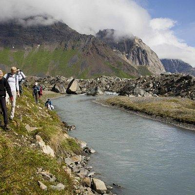 Hiking with Alaska Alpine Adventures in Denali National Park