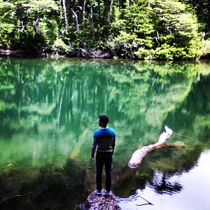 Lago Chico Parque Nacional Huerquehue