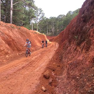 Mountain Biking at Dalat Vietnam by GREEN HORIZON TOURS