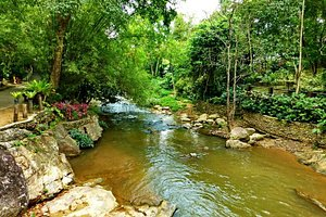 the lovely river