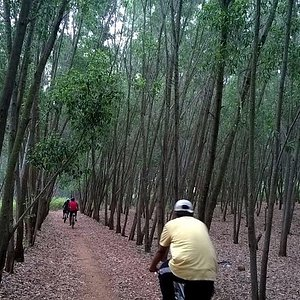 Trail ride in Turahalli Forest