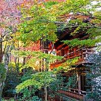 Sanzen-in Temple #5