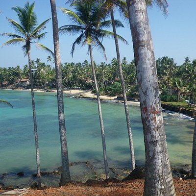view from one of the Mirissa temples.