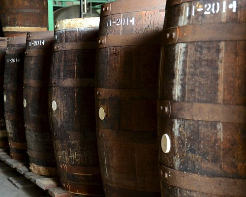 Casks ready to be filled at Foursquare distillery.