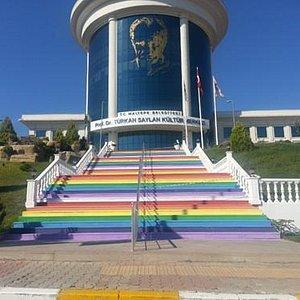 Nice Cultural Center