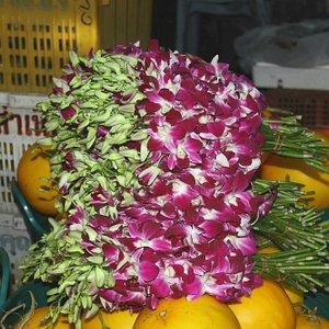 Orchiedee e frutta