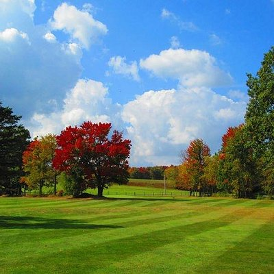 A look at the beautiful foliage approaching #1 green