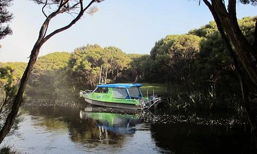 Aihe Eco Charters & Water Taxi - at Freshwater Landing