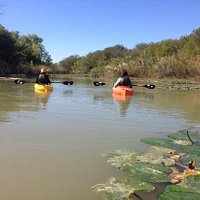 Guided kayaking on the McWhorter Creek